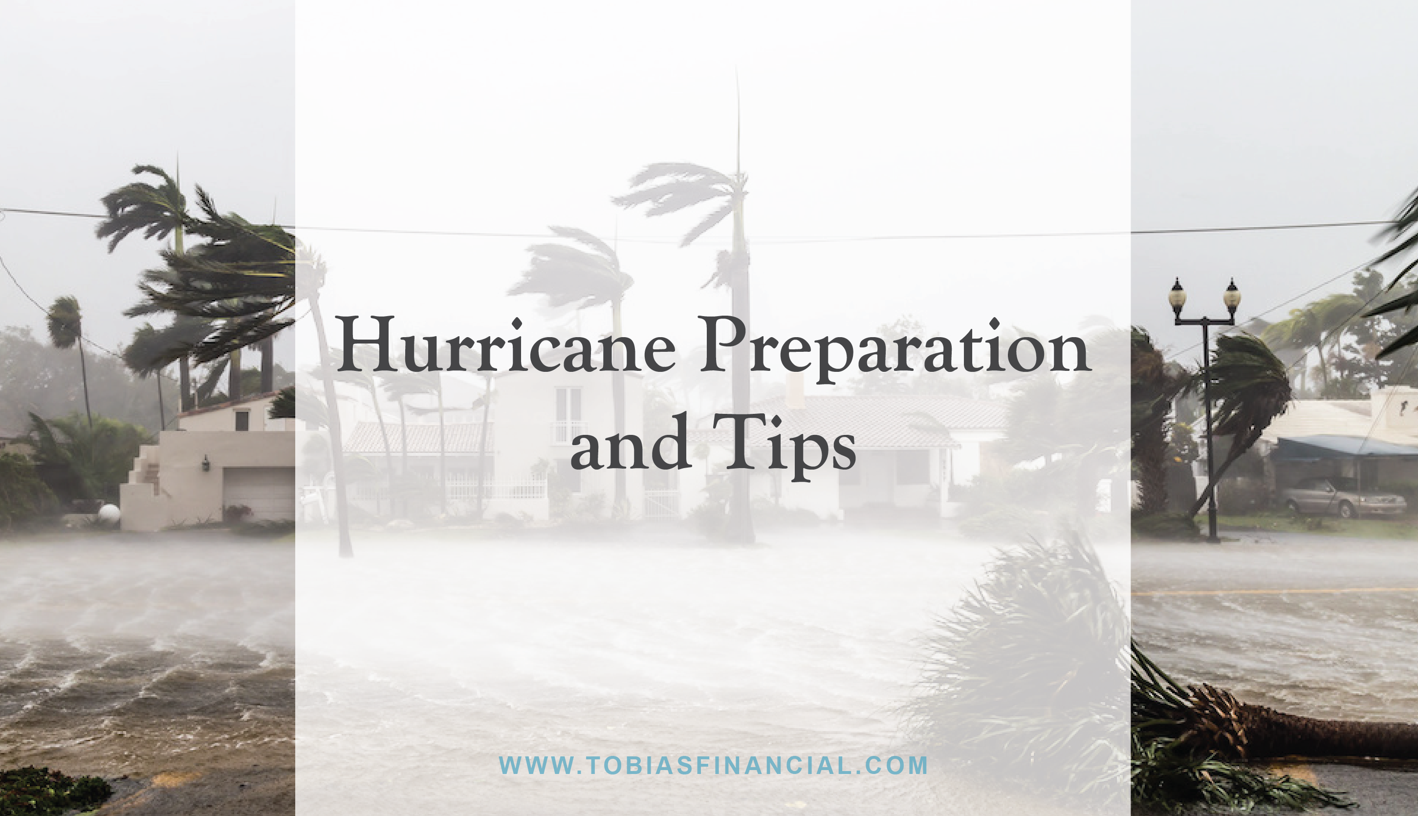 Hurricane Preparation and Tips