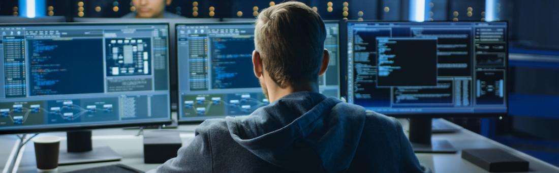 Cybersecurity Fundamentals with NSU Professor Dr. Yair Levy